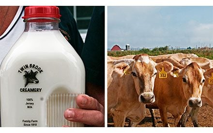 This Fifth-Generation Dairy Farm Brought Back These Awesome Glass Milk Bottles