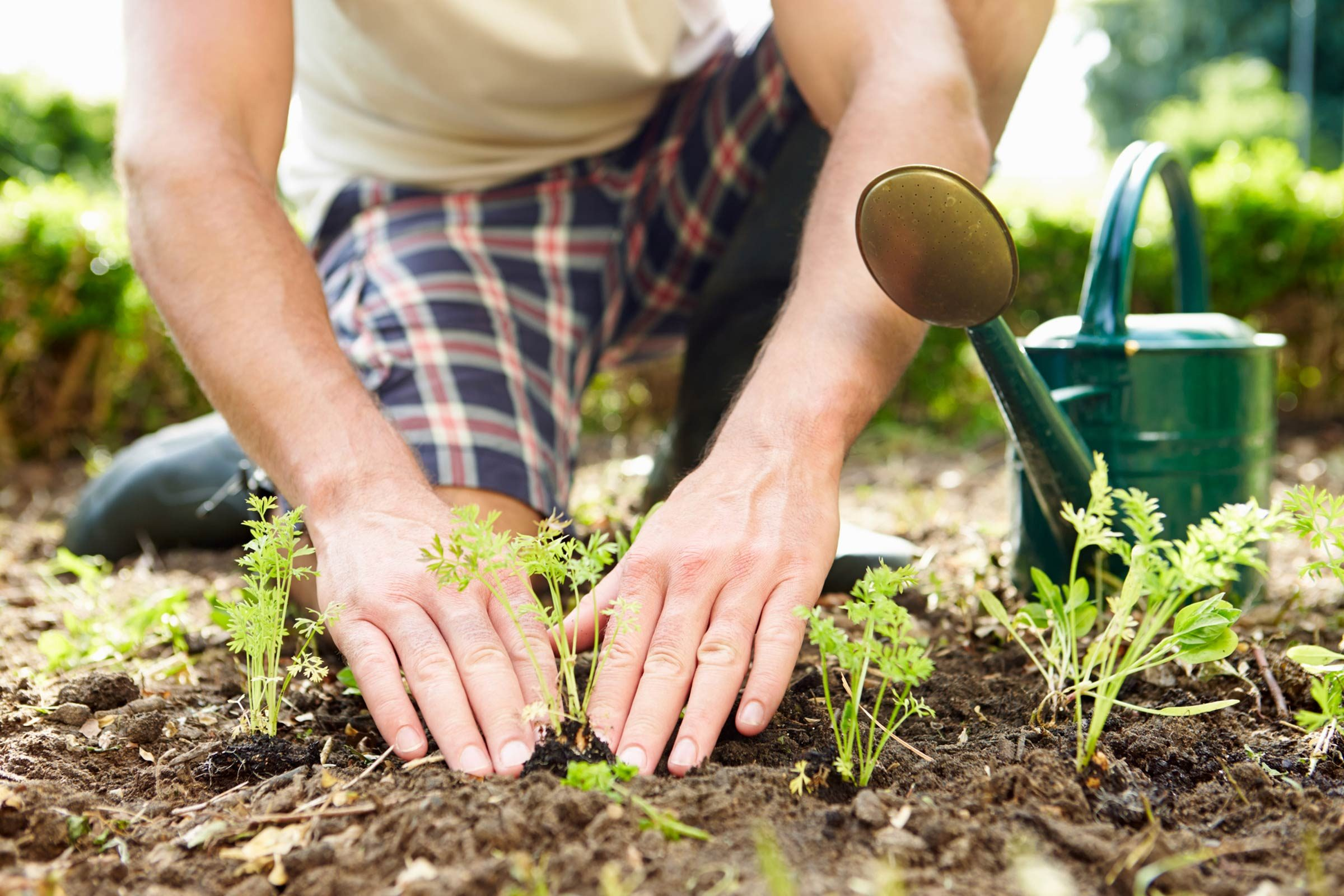 The Surprising Health Benefits of Gardening | Reader\u0027s Digest ...