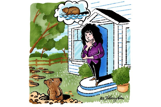 I-Could-Have-Sworn-I-Saw-A-Beaver-on-My-Lawn.-My-Neighbor-Proved-Me-Wrong