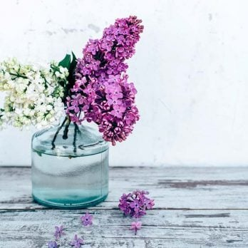 What Scent Reminds You of Home? For Me, It's the Smell of Lilacs