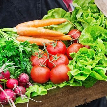 10 Must-Read Insider Tips to Save You Money on Gardening