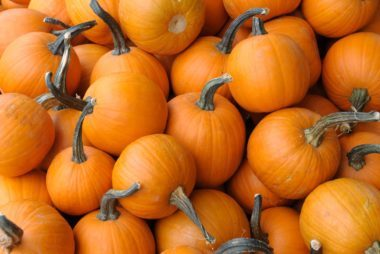 02_pumpkin_The_healthiest_food_