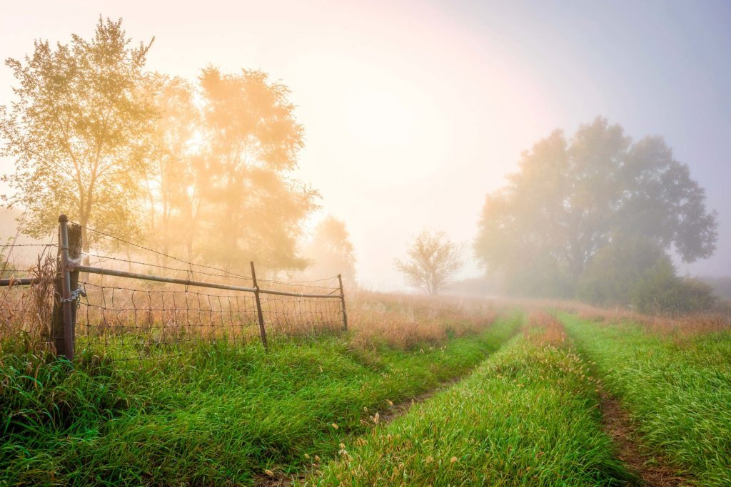 04-These-Photos-of-the-Country-Will-Make-You-Want-to-Move-to-a-Farm