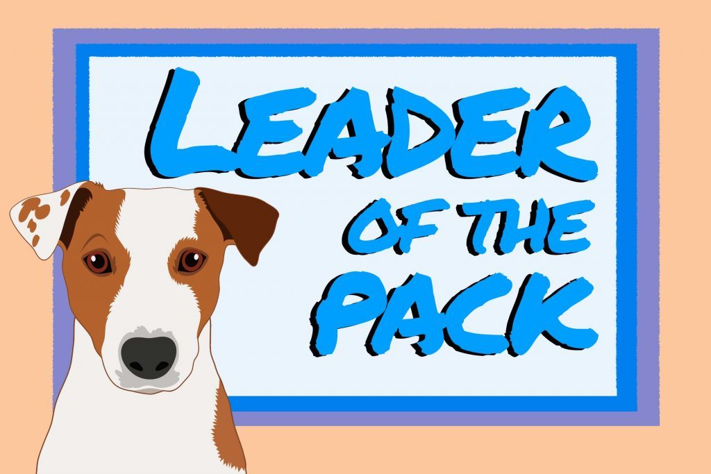 Leader Of The Pack