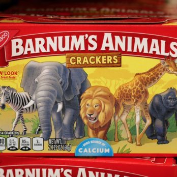 13 Fascinating Things You Didn't Know About Animal Crackers