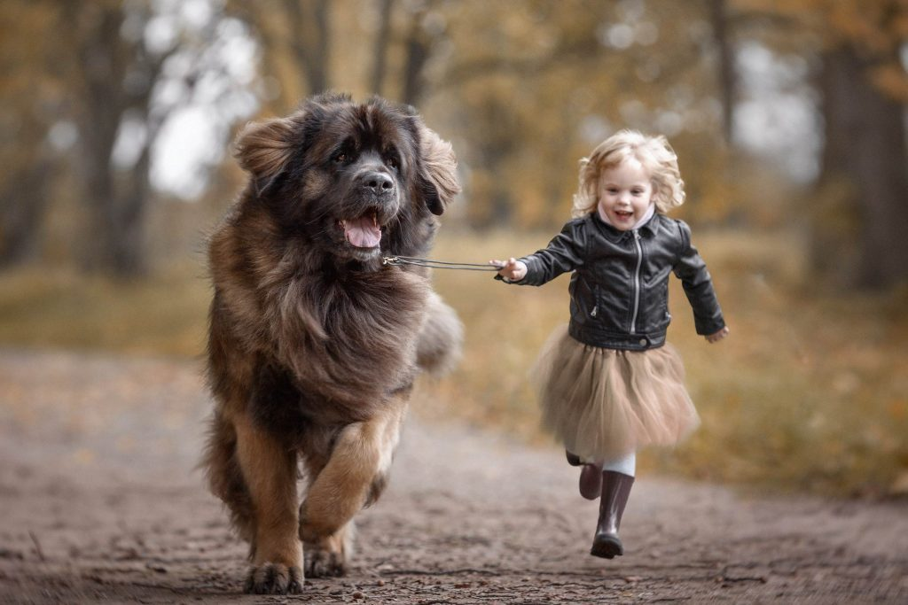 02_Little-Kids-and-Their-Big-Dogs-COVER-HI-RES