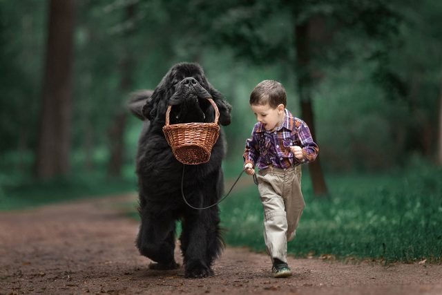 04_Little-Kids-and-Their-Big-Dogs-COVER-HI-RES