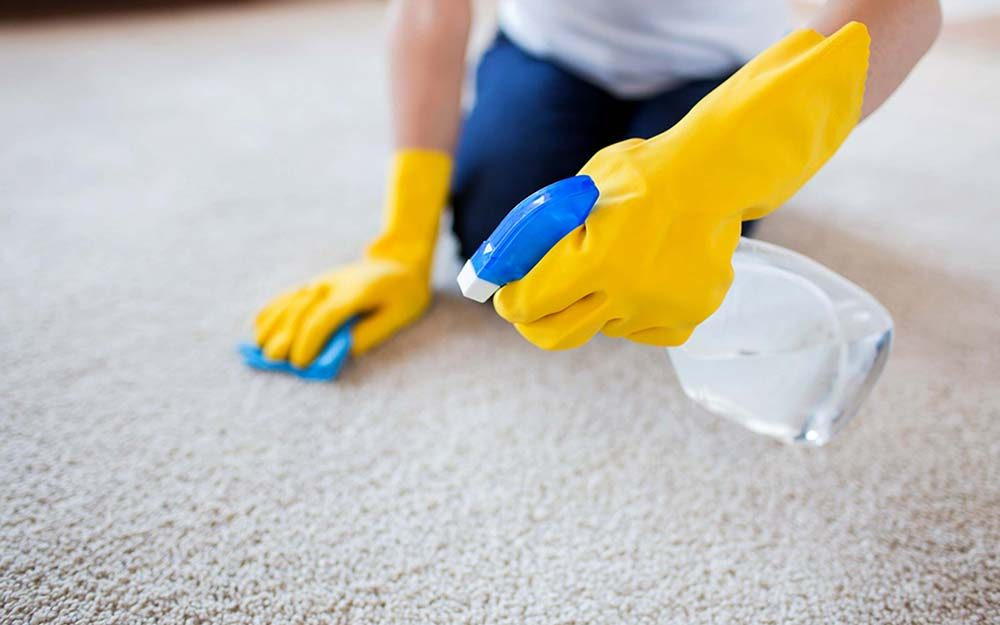 05-carpet-shampoo-Allergic-to-Cleaning-13-Ways-to-Keep-Allergies-in-Check-When-Spring-Cleaning_262998791-Syda-Productions-ft.jpg