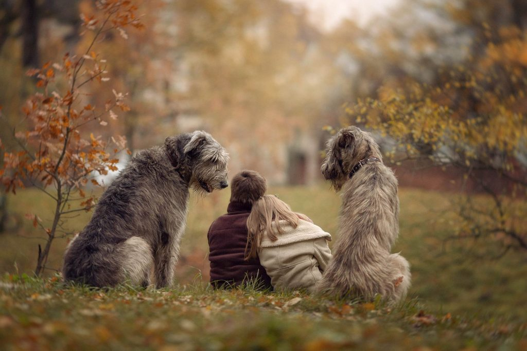 05_Little-Kids-and-Their-Big-Dogs-COVER-HI-RES