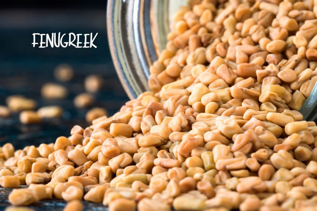 The best and worst supplements for a diabetic diet readers digest skip this fenugreek forumfinder Gallery