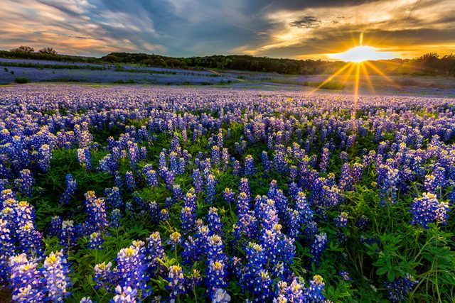 10-texas-happiest-states-270799604-DonLand