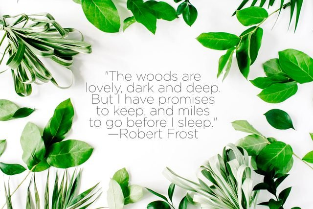 Quotes-From-Iconic-Authors-That-Will-Make-You-Fall-In-Love-with-Nature