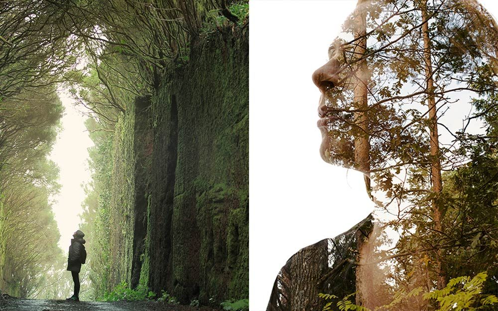 Is Nature Your Brain's Miracle Medicine?