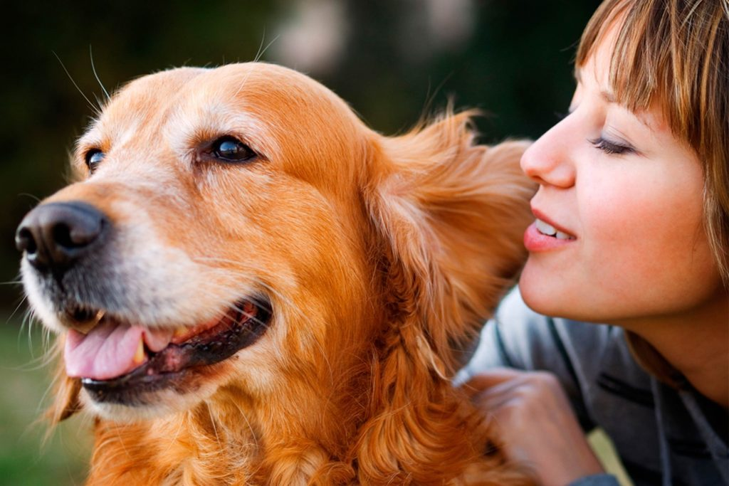 Good-News!-Talking-To-Your-Pet-Means-That-You're-Smart
