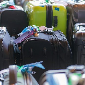 "14 of the Strangest Things That Have ""Disappeared"" from Suitcases"