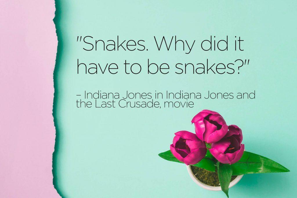 prime minister gladstone quotes