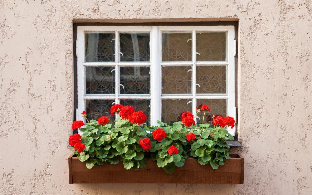 Window Box Ideas How to Grow Herbs and Veggies In a Window Box | Readeru0027s Digest - Readeru0027s Digest & Window Box Ideas: How to Grow Herbs and Veggies In a Window Box ... pezcame.com