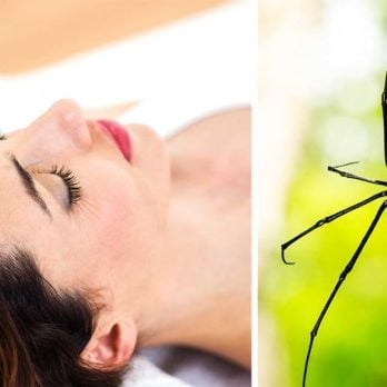 How One Session of Hypnotherapy Finally Ended This Woman's Debilitating Fear of Spiders