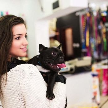 26 Secrets Your Pet Store Won't Tell You (But You Should Know)