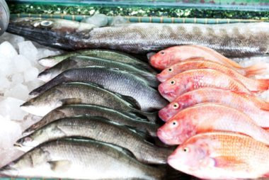 Facts about seafood that will change how you eat it for What does sustainable fish mean