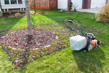 Let Fall Leaves Lie, And Cut Them Into Tiny Bits With A Mulching Lawn Mower  Instead.