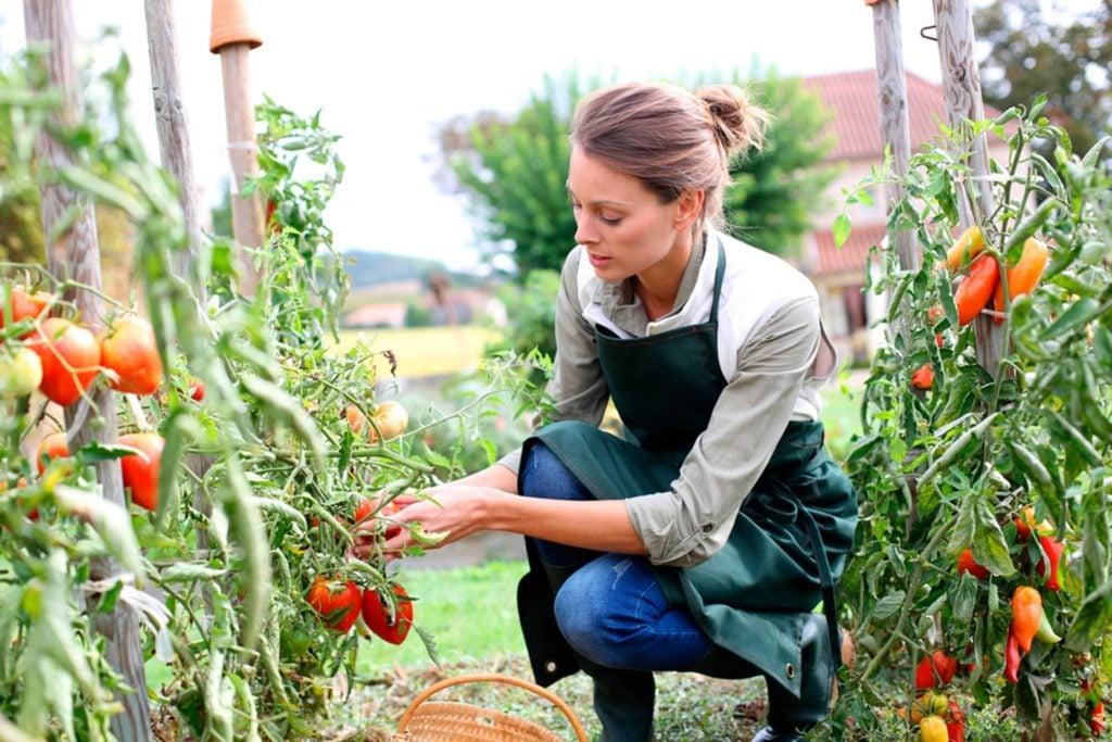 10-garden-Wacky-Ways-to-Burn-Extra-Calories-Image-155872586-goodluz