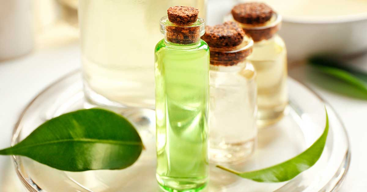 is-tea-tree-oil-a-treatment-for-lice-512023288-Africa-Studio-FB
