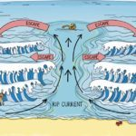 Rip Currents Can Be Deadly—This Chart Shows Exactly What to Do If You Ever Get Caught In One