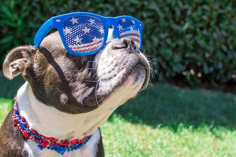 10-Fourth-of-July-Photos-That-Will-Get-You-Ready-for-the-Long-Weekend-374863048-OpenRangeStock
