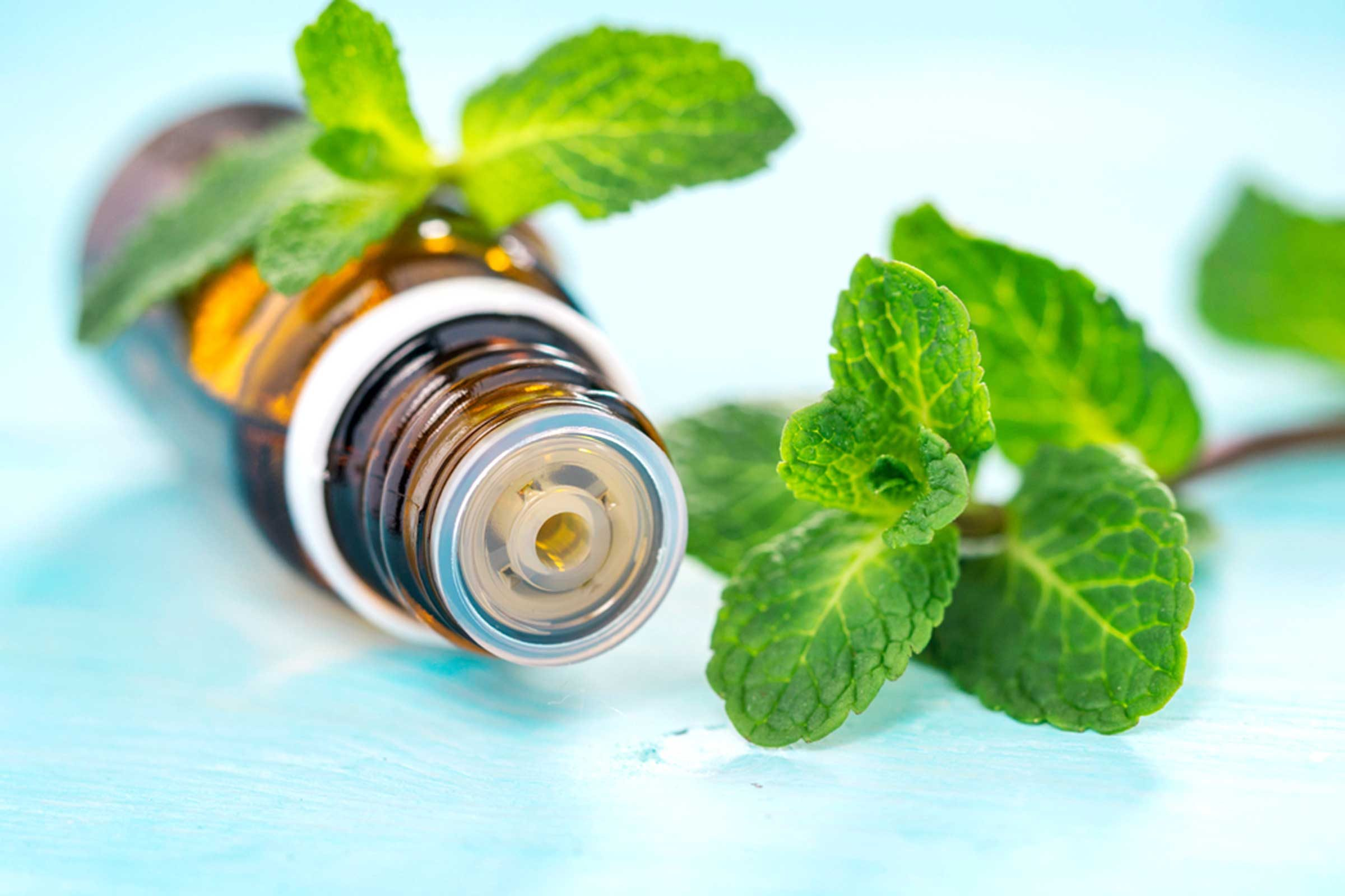 essential oil bottle on its side with mint leaves on a light blue surface