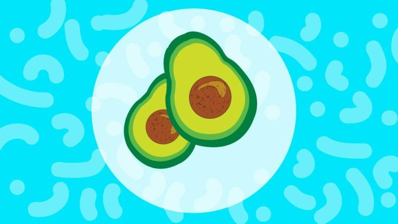 How To Ripen An Avocado In Under 10 Minutes Reader S Digest