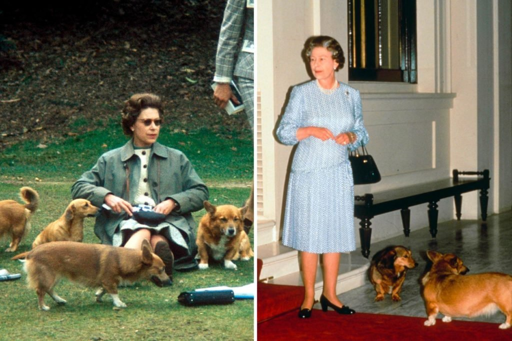 The Queen Loves Her Corgis So Much She Even Calls Them Family