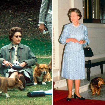 The Real Reason Queen Elizabeth II Has Owned So Many Corgis