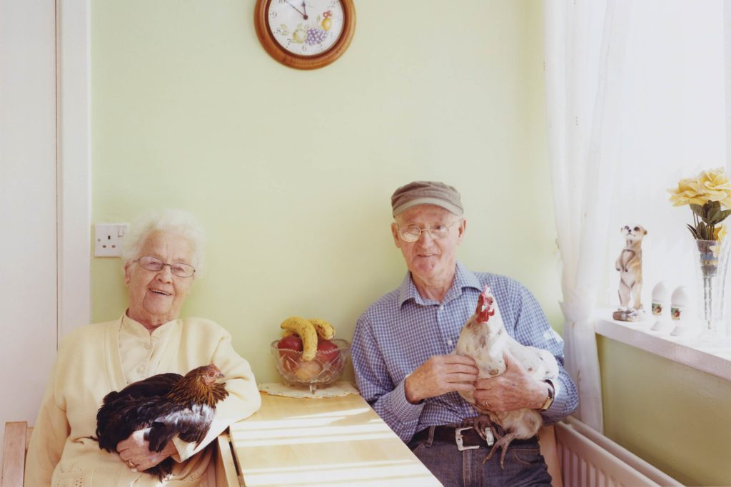01-The-Surprising-Benefits-in-Keeping-the-Company-of-Hens-PHOTOGRAPHS-BY-JANE-HILTON