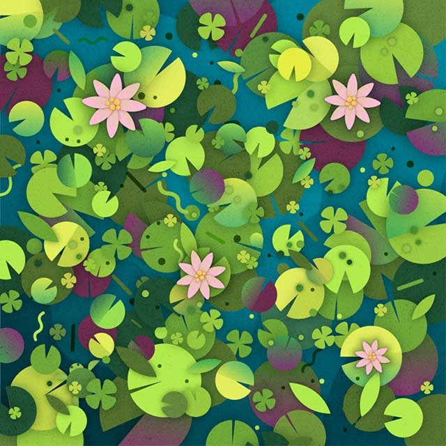 can you find the turtle among the lilly pads hidden objects puzzle