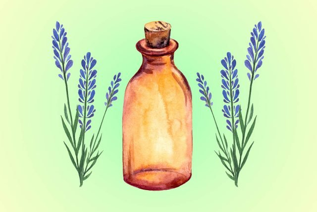 01-lavendar-Five-Essential-Oils-for-Allergies--Here's-What-You-Need-to-Know-Now-shutterstck