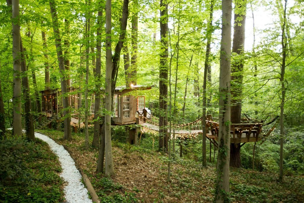 01-step-inside-the-tree-house-thats-the-most-popular-listing-on-airbnb