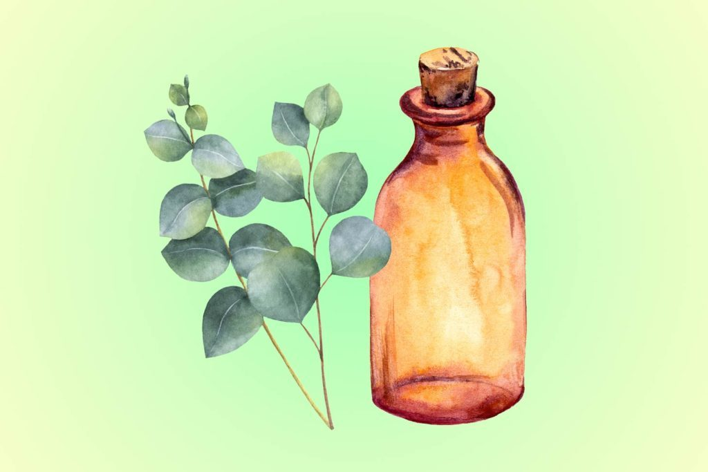02-eucalytus-Five-Essential-Oils-for-Allergies--Here's-What-You-Need-to-Know-Now-shutterstck