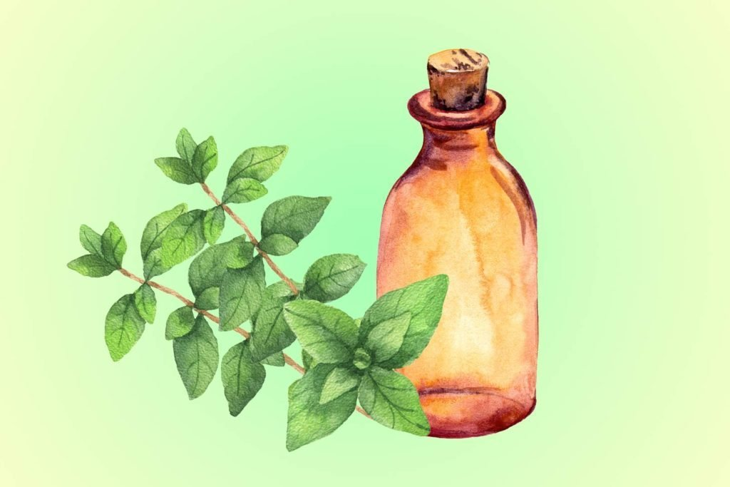 03-oregano-Five-Essential-Oils-for-Allergies--Here's-What-You-Need-to-Know-Now-shutterstck