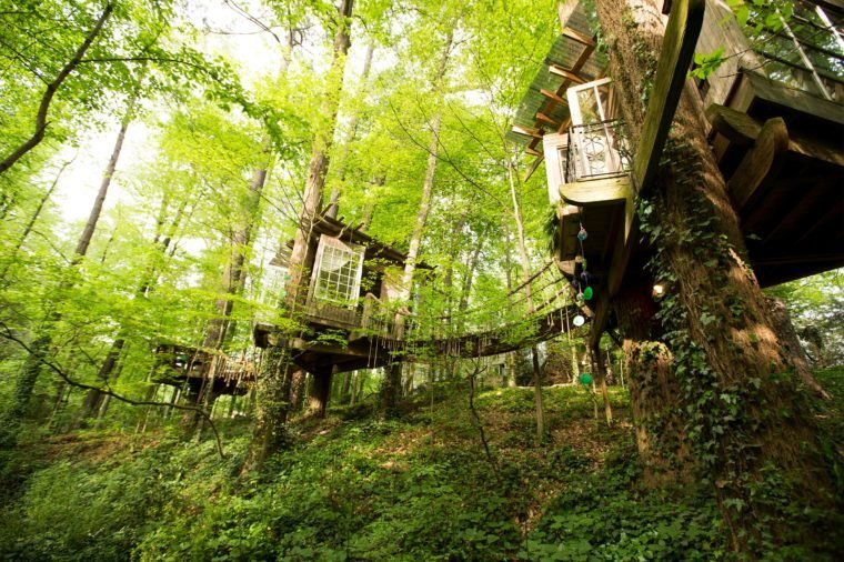05-step-inside-the-tree-house-thats-the-most-popular-listing-on-airbnb