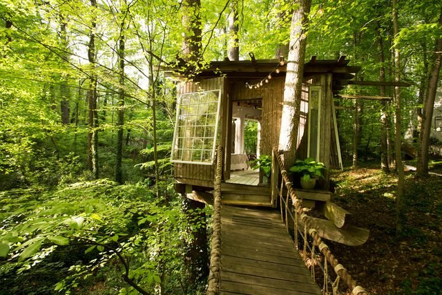 07-step-inside-the-tree-house-thats-the-most-popular-listing-on-airbnb