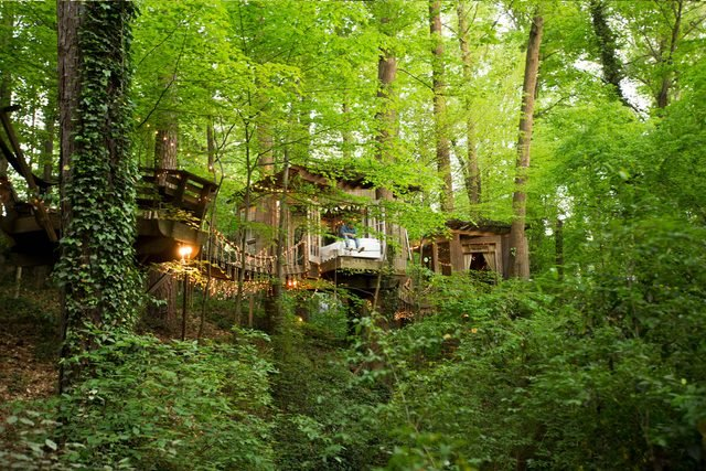 08-step-inside-the-tree-house-thats-the-most-popular-listing-on-airbnb