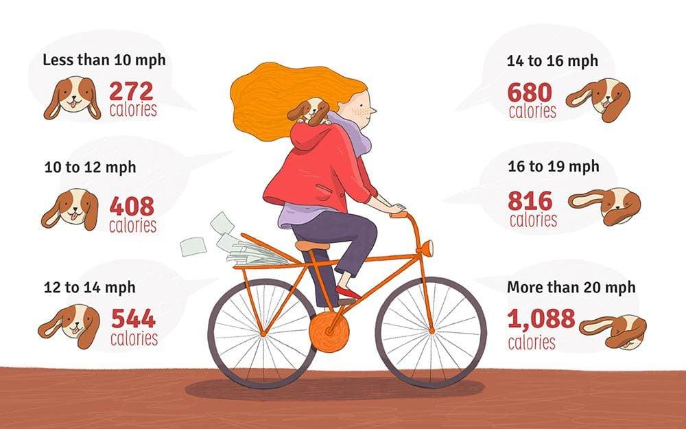 Biking to Lose Weight | Reader's Digest