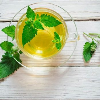 Stop Everything—Spearmint Tea Could Be the Cure for Acne!