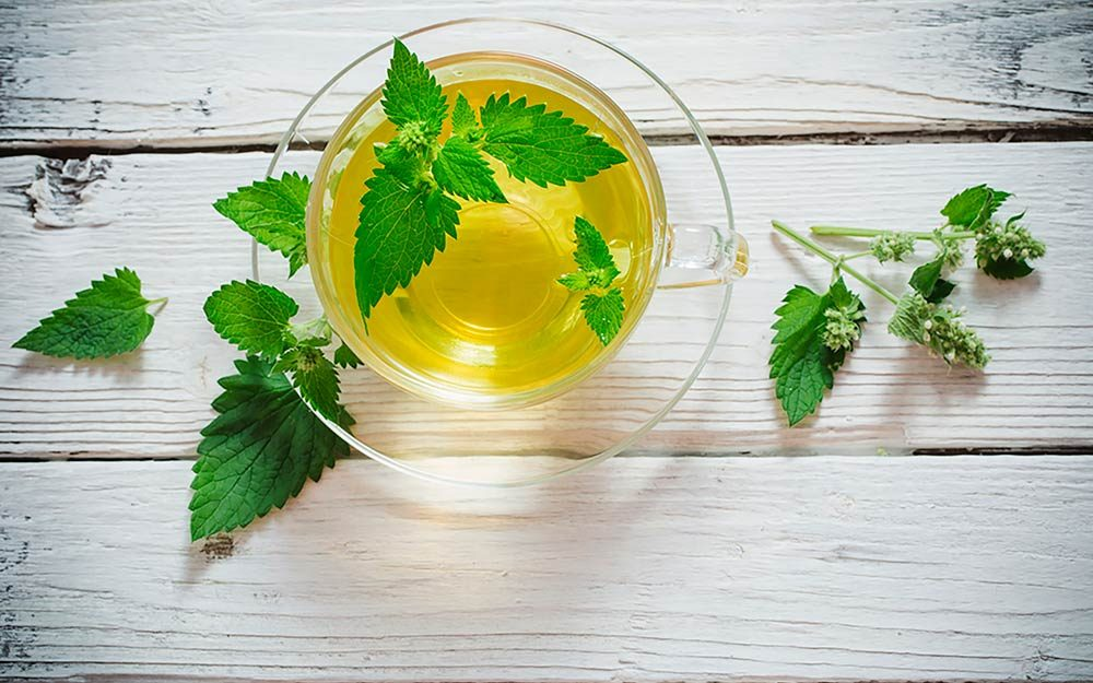 Stop-Everything—Spearmint-Tea-Could-Be-the-Cure-for-Acne-505128496-Maya-Kruchankova-FT