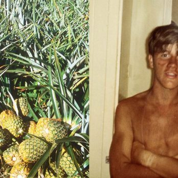 My Summer Job Was Picking Pineapples in Hawaii (But Don't Get Jealous Just Yet)