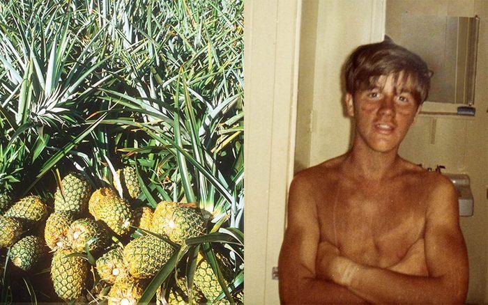 What-It's-Like-Having-A-Summer-Job-Picking-Pineapples-in-Hawaii-Courtesy-Ken-BushReminisce-shutterstock-FT