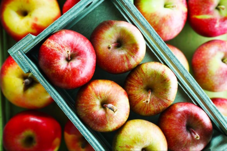 01-apples-Fruits and Vegetables that Taste Best in the Fall_226721947-Africa Studio