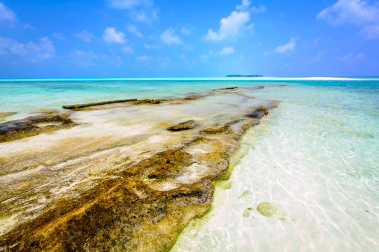 02-maldives-Beaches With the Clearest Water in the World_657452791-Michal-Senk