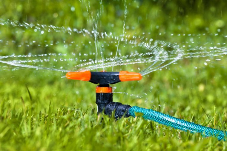 06-sprinkler-Things Everyone Should Do at Least Once Before Summer's Over_437318764-rodimov